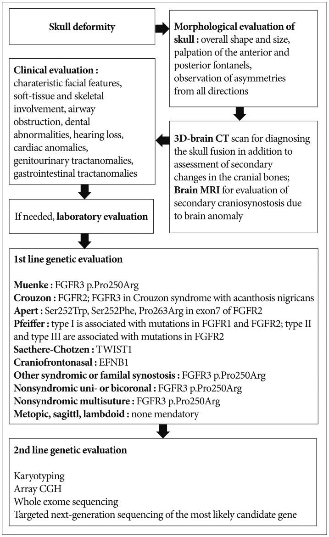 Journal of Korean Neurosurgical Society